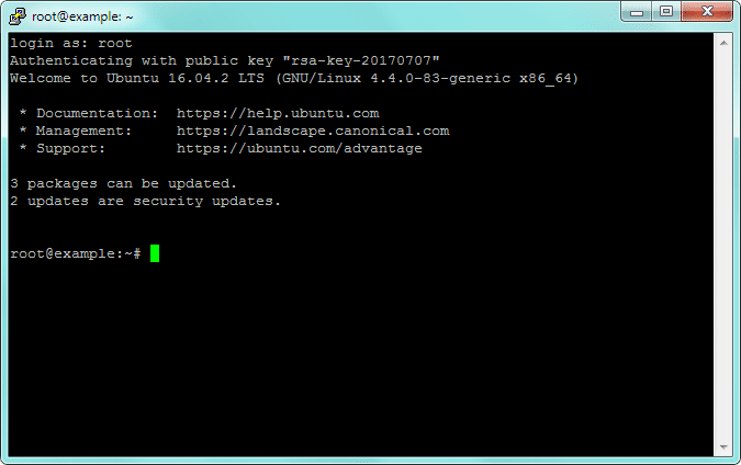 SSH Root Login Successful